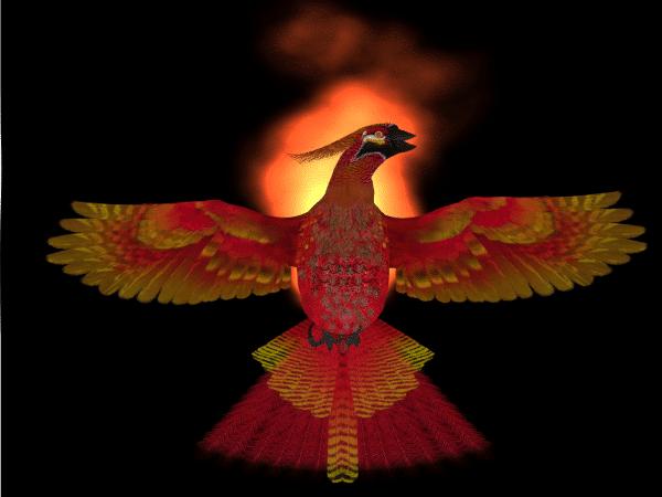 Phoenix-Coaching-Cover-Image