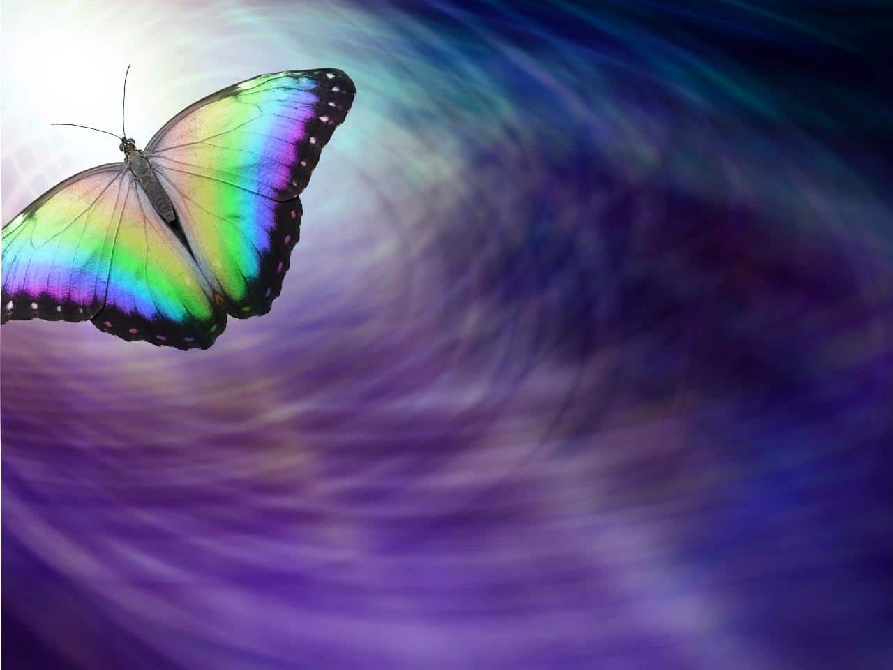 Change-Butterfly-Energy-Blog-Image